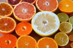 Faire germer un noyau de mangue mademoiselleblume - Planter pepin citron ...