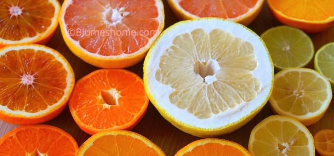 Planter des pépins d'agrumes : citron, orange, kumquat et autres