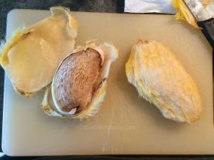 noyau d une mangue