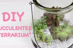 Vidéo DIY – Terrarium de succulentes
