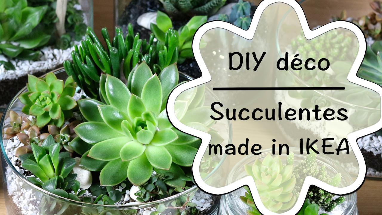 vid o diy jardin de succulentes de chez ikea. Black Bedroom Furniture Sets. Home Design Ideas