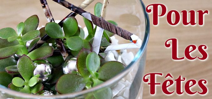 Créer une décoration de succulentes pour Noël | tutoriel facile de succulentes made in IKEA #3