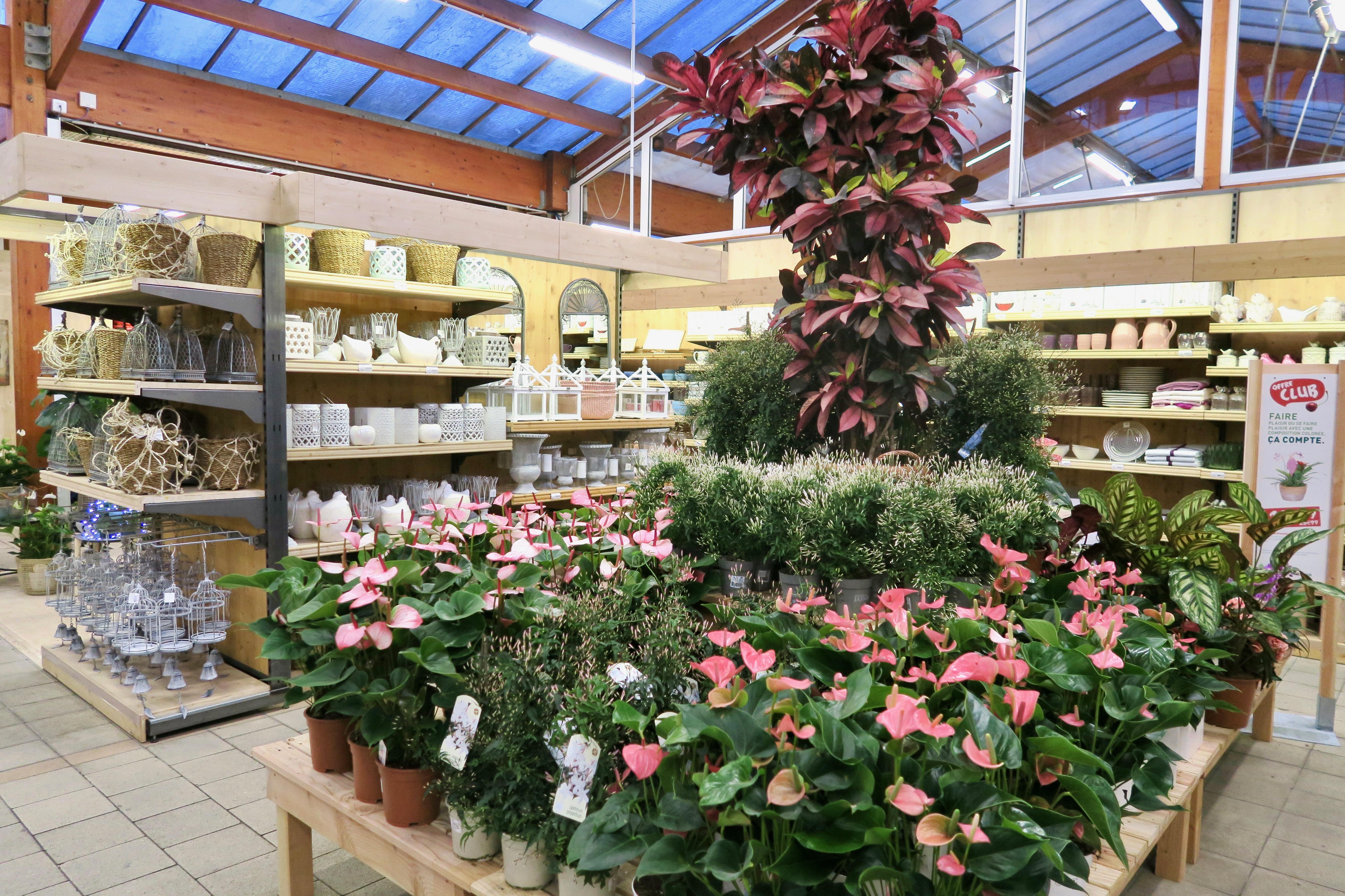 botanic ville la grand fleurs. Black Bedroom Furniture Sets. Home Design Ideas