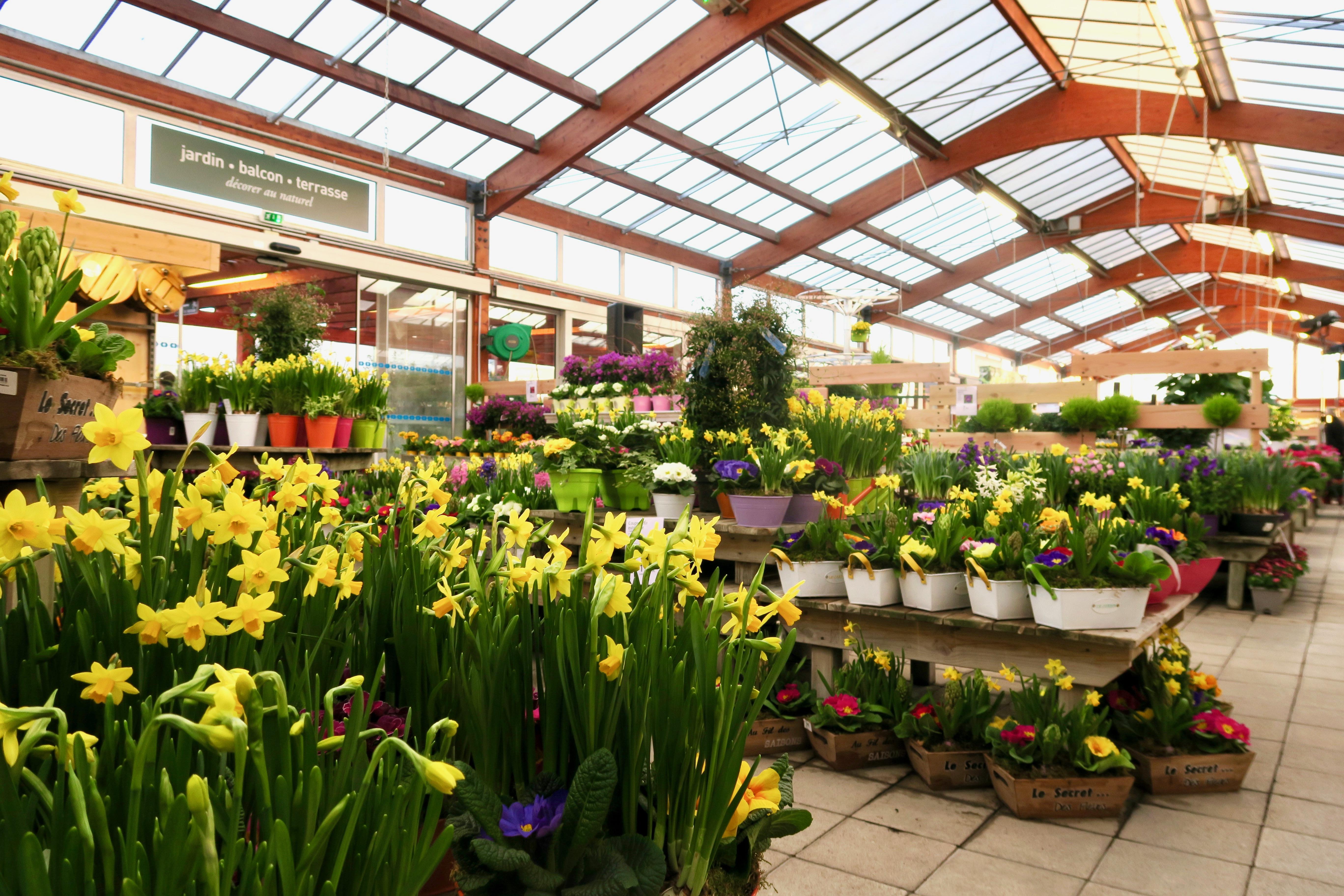 Botanic bien plus qu 39 une jardinerie ses univers et sa magie for Botanic fleurs artificielles