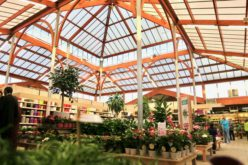 Botanic, bien plus qu'une jardinerie – ses univers et sa magie