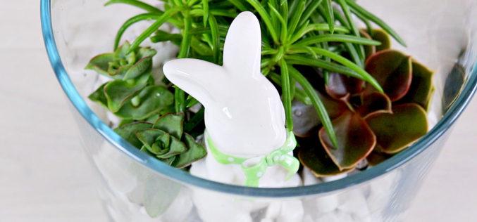 Le jardin de succulentes des Lapins | tutoriels faciles de succulentes – Décoration pour Pâques