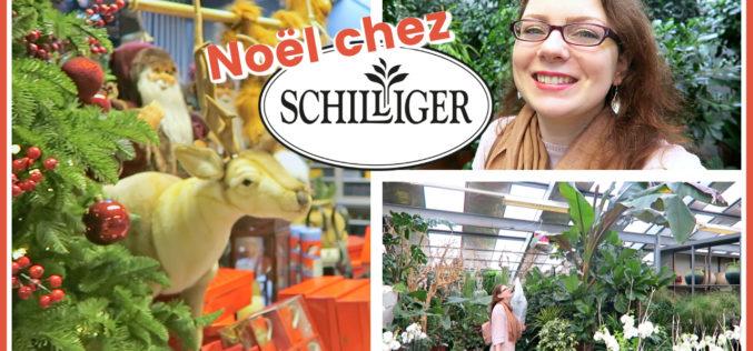 SHOPPING JARDINERIE – Marché de Noël et Achats Plantes chez Schilliger | Avec La Route de Ben