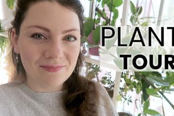 PLANT TOUR 2019 – Ma collection complète de plantes d'intérieur | Plantes vertes et orchidées