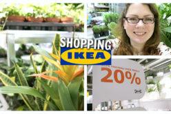 SHOPPING VLOG – Toutes les plantes d'intérieur en promo : action chez IKEA