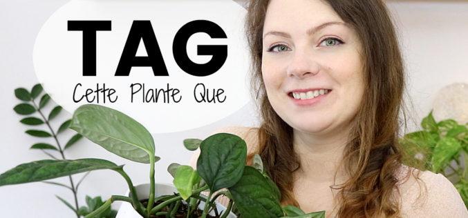 TAG plantes – Cette Plante Que | Confessions d'une amoureuse des plantes