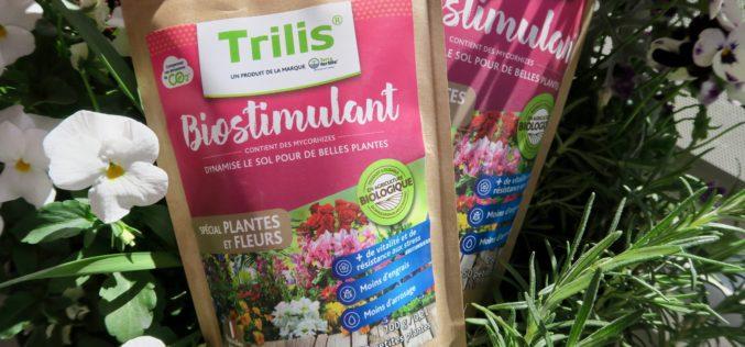 Mieux nourrir ses plantes avec le fertilisant plantes Terra fertilis®