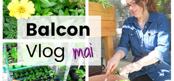 BALCON VLOG – Haul, installation coccinelles, plantations et rempotages