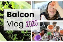 BALCON VLOG – Jardiner pour s'apaiser, tri, semis et planter des salades