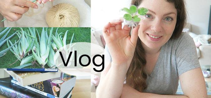 VLOG – Jardinage, envoi de boutures et Pumpkin Autumn Challenge | Une semaine ensemble